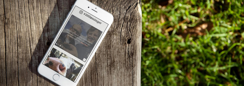 iphone med skjermbilde fra klimasmartlandbruk.no