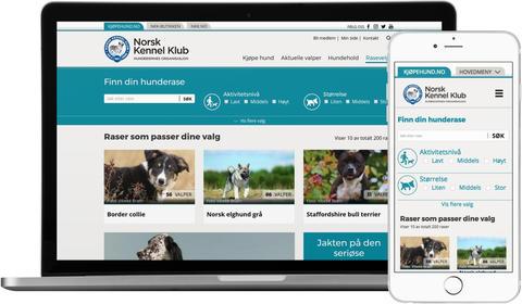skjermdump kjøpehund.no