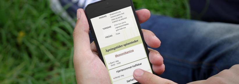 mobil med skjermbilde fra sias.no