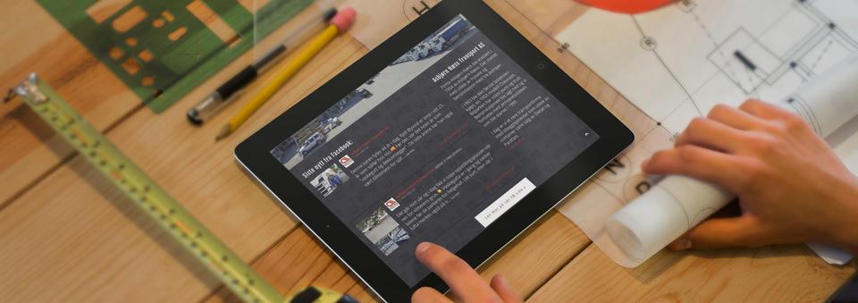 skjermbilde fra www.asbjorn-ness.no
