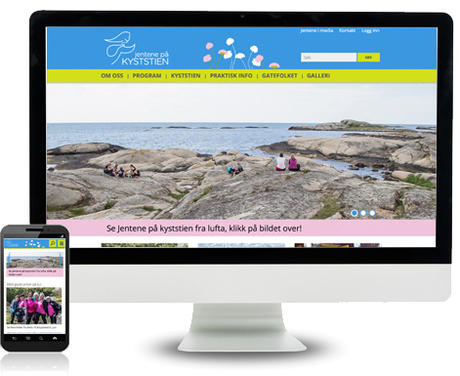 skjermdumper